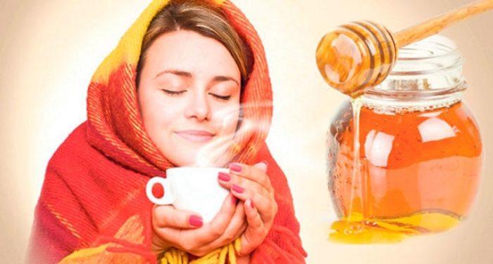 Мед и простуда